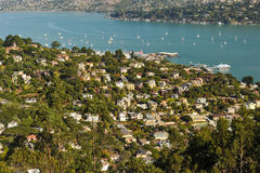 Sausalito hillside homes and bay with sailboats, ferry Stock Photography