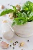 Sause et ingrédients de pesto sur le fond blanc Image stock