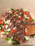 Sautéingsrundvlees en Groenten Royalty-vrije Stock Foto