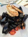 Sautéed Maine mussels Royalty Free Stock Photos