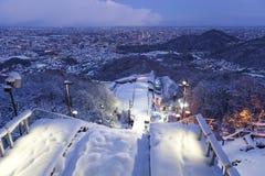 Saut à skis Image stock