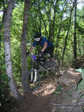 Saut 11 de vélo de montagne Image stock