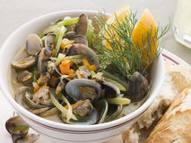 Saut ed Clams with Fennel and Orange Stock Photography