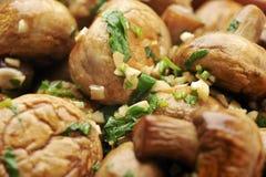 sauteed грибы Стоковые Изображения