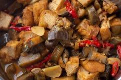 Sauteed aubergine och tofu fotografering för bildbyråer