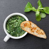 Sauteed garlic spinach dish, baked bread slice  with  melted che Royalty Free Stock Image