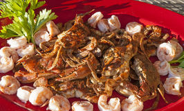 Sauteed Maryland blue soft-shelled crabs Royalty Free Stock Image