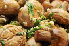 Sauteed mushrooms. Casserole sauteed mushrooms with garlic and parsley on white background Stock Images
