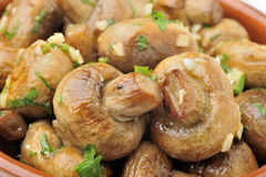 Sauteed mushrooms Royalty Free Stock Photos