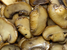 Sauteed mushrooms Royalty Free Stock Photography