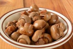 Sauteed Mushrooms Stock Image