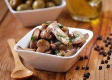 Sauteed mushrooms photographed in closeup Royalty Free Stock Photos