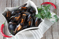 Sauteed Mussels Royalty Free Stock Image