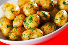 Sauteed potatoes Royalty Free Stock Photography