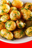Sauteed potatoes Stock Photography