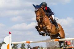 Sauter équestre de fille de cheval Photographie stock libre de droits