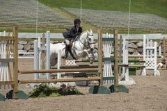 Sauter d'exposition de cheval et de fille Photographie stock libre de droits