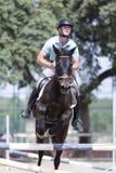 Sauter de cavalier de cheval Image libre de droits