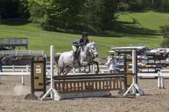 Sauter de cheval photographie stock libre de droits
