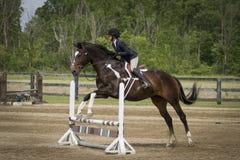 Sauter de cheval de fille et de peinture Photographie stock libre de droits