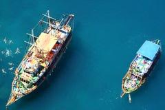 Natation en mer image libre de droits