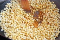 Sauter le maïs Photographie stock libre de droits