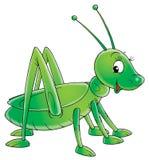 Sauterelle verte Image libre de droits