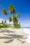 Sauteurs Bay, Grenada. Beach on Sauteurs Bay, Grenada Royalty Free Stock Images