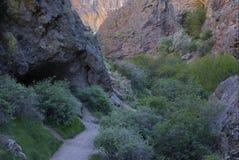 Sautez le canyon de crique Photo stock