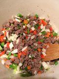 Sautéing Beef and Vegetables. Royalty Free Stock Photo