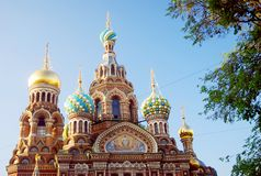 sauveur d'église de sang renversé St Petersburg, Russie Images libres de droits