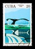 Sauvez les baleines, serie de protection de l'environnement, vers 1992 Images stock