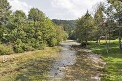 Sava Bohinjka river landscape, Slovenia Royalty Free Stock Photo
