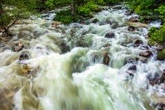 Sava Bohinjka river Royalty Free Stock Photography
