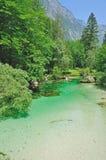 Sava Bohinjka River,Slovenia Stock Photo