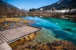Sava-Frühling, Zelenci, Slowenien Lizenzfreies Stockbild