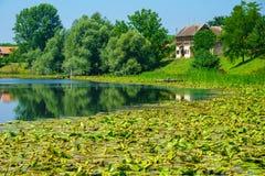 Sava River, Kroatien Stockfotos