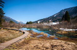 Sava wiosna, Zelenci, Slovenia fotografia royalty free
