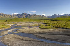 Savage creek in denali national park Stock Image