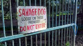 Savage Dog Sign royaltyfria foton