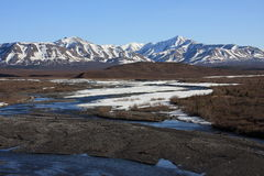 Savage River in Spring, Denali National Park Royalty Free Stock Images