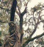 Savana do cemitério Imagem de Stock