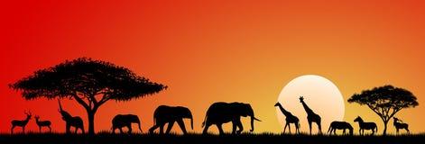 Savana dos animais Fotografia de Stock Royalty Free