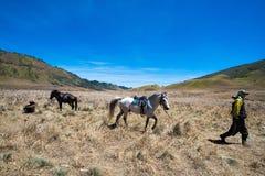 Savana Hill Mt Bromo Royalty Free Stock Photo