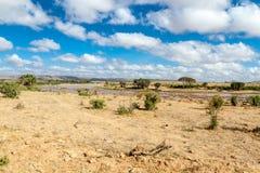Savana krajobraz w Afryka Obrazy Royalty Free