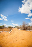 Savana road Royalty Free Stock Photography