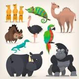 Savanah do africano do fram dos animais Imagem de Stock Royalty Free