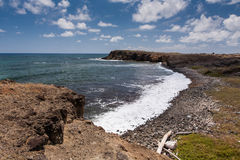 Savane de Petrification, Martinique Royalty Free Stock Image
