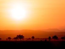 savanna images stock