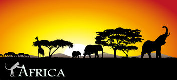 Savanna africana illustrazione di stock